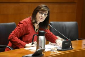 Carmen Sánchez interviniendo ante la Comisión Institucional de las Cortes.