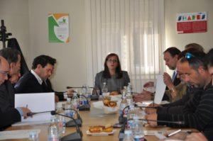 Imagen de la Comisión Ejecutiva con la presidenta de la FAMCP, Carmen Sánchez, dirigiendo la reunión.